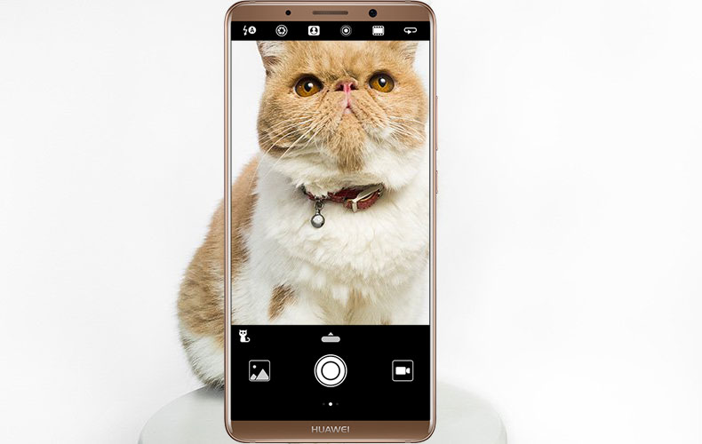 Huawei Mate 10 Pro Camera with AI integrated